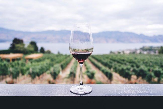 Едим руками: Ужин «вино + еда»
